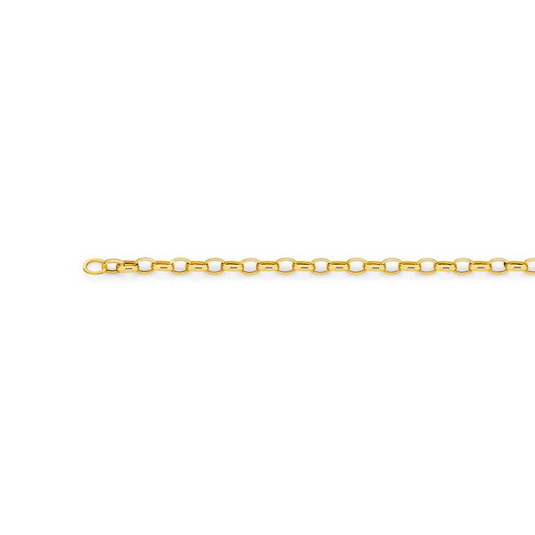 9ct Gold 45cm Oval Belcher Chain
