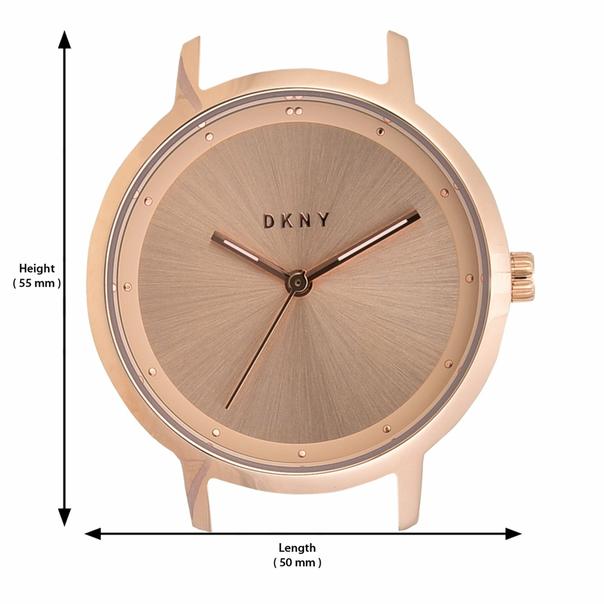 DKNY Modernist Ladies Watch